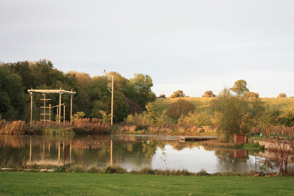 Peaceful Lake TCR Hub