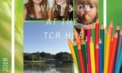 Summer Brochure TCR Hub